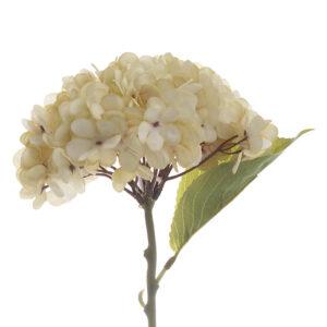 Λουλούδι/Μπουκέτο Inart εκρου 35 ΕΚ. 3-85-084-0049